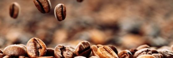Weil nachhaltiger Kaffee einfach am Besten schmeckt!